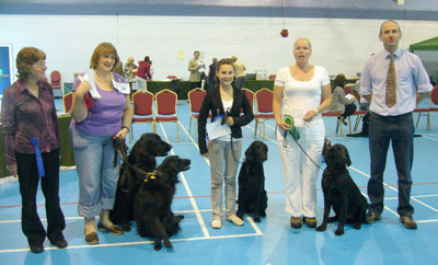 Beginners Obedience Winners